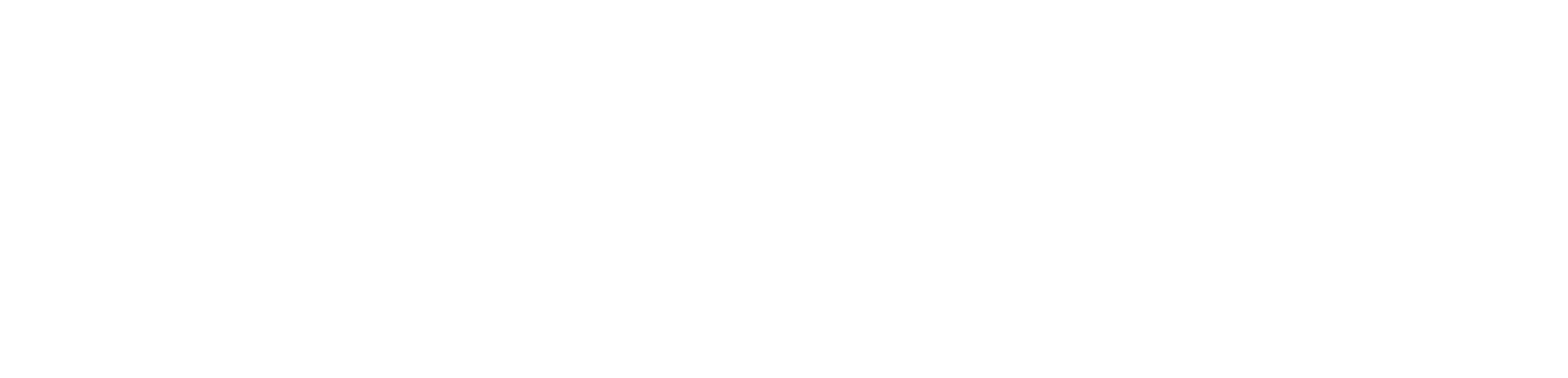 Rapidmarin_logo_white_h-res